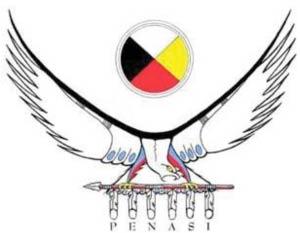 Penasi Logo